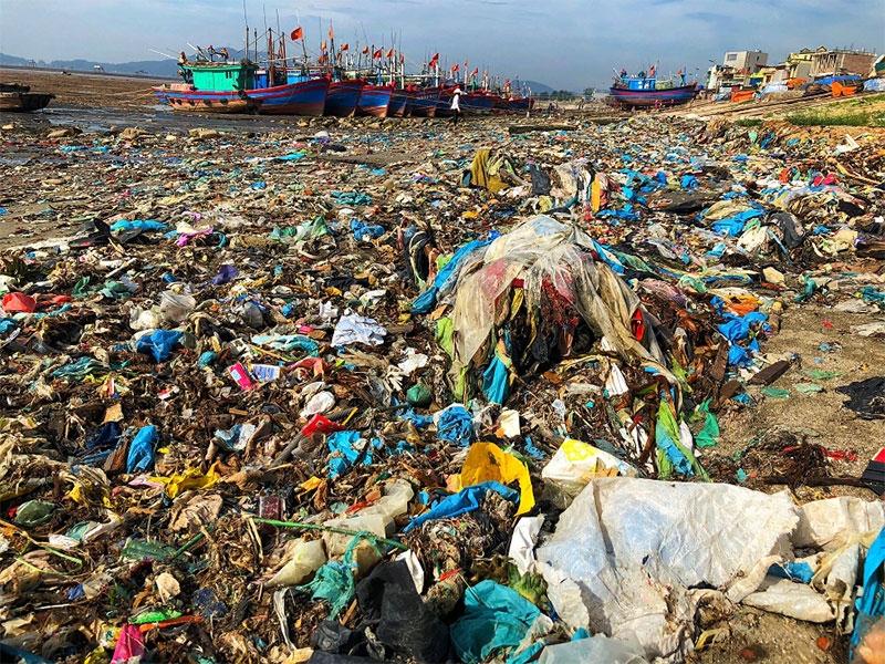 Giá đắt con người phải trả khi hủy hoại môi trường